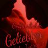 Gefährlicher Geliebter - Göttliche Intrigen | Schwule Bücher im OnlineShop Gay Book Fair